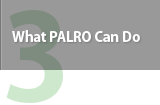What PALRO Can Do